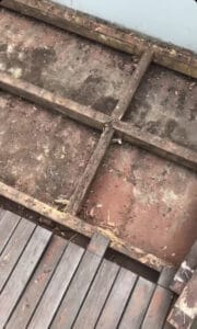 close up of a rotten out low height timber deck
